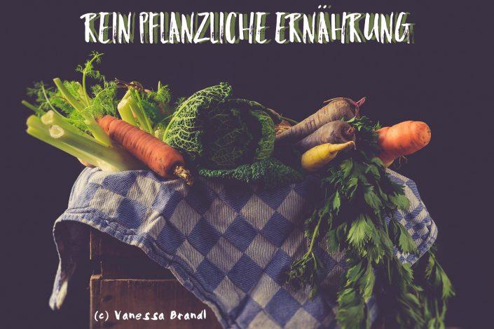pflanzenbasierte Ernährungsweise