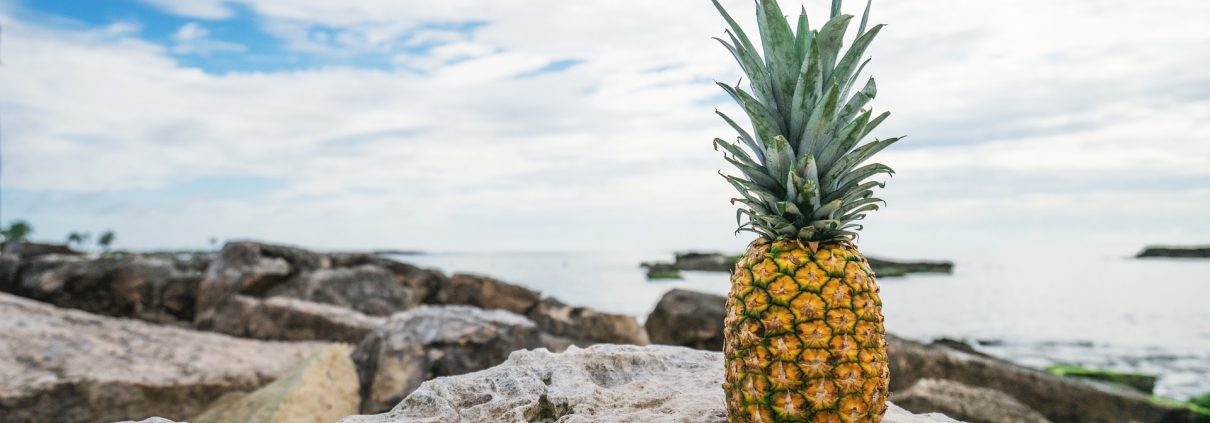 Urlaub und gesundes Essen